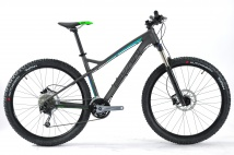 VTT TOX LIMITED 2017